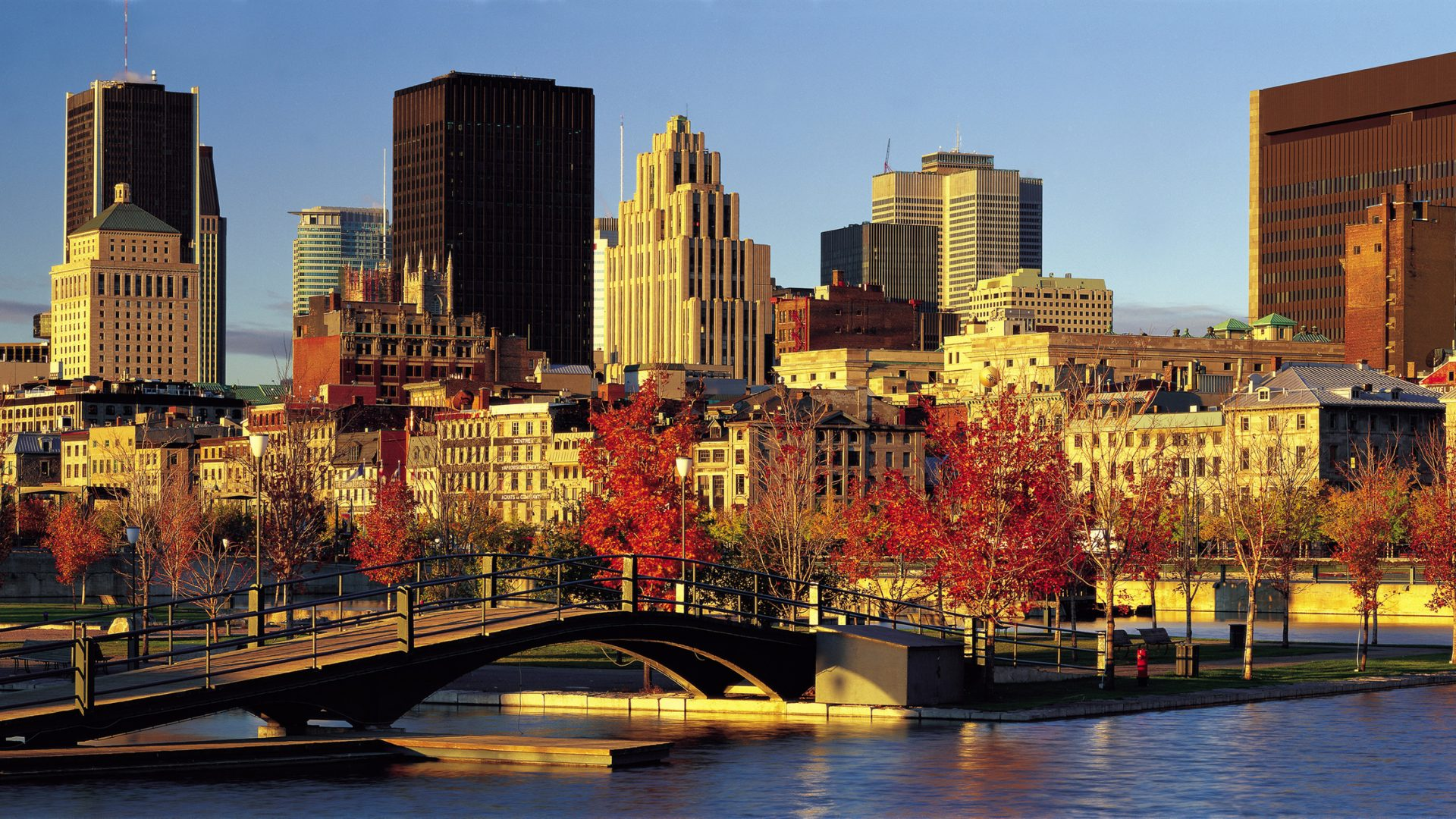 Montreal Skyline in the fall | Loews Hotel Vogue