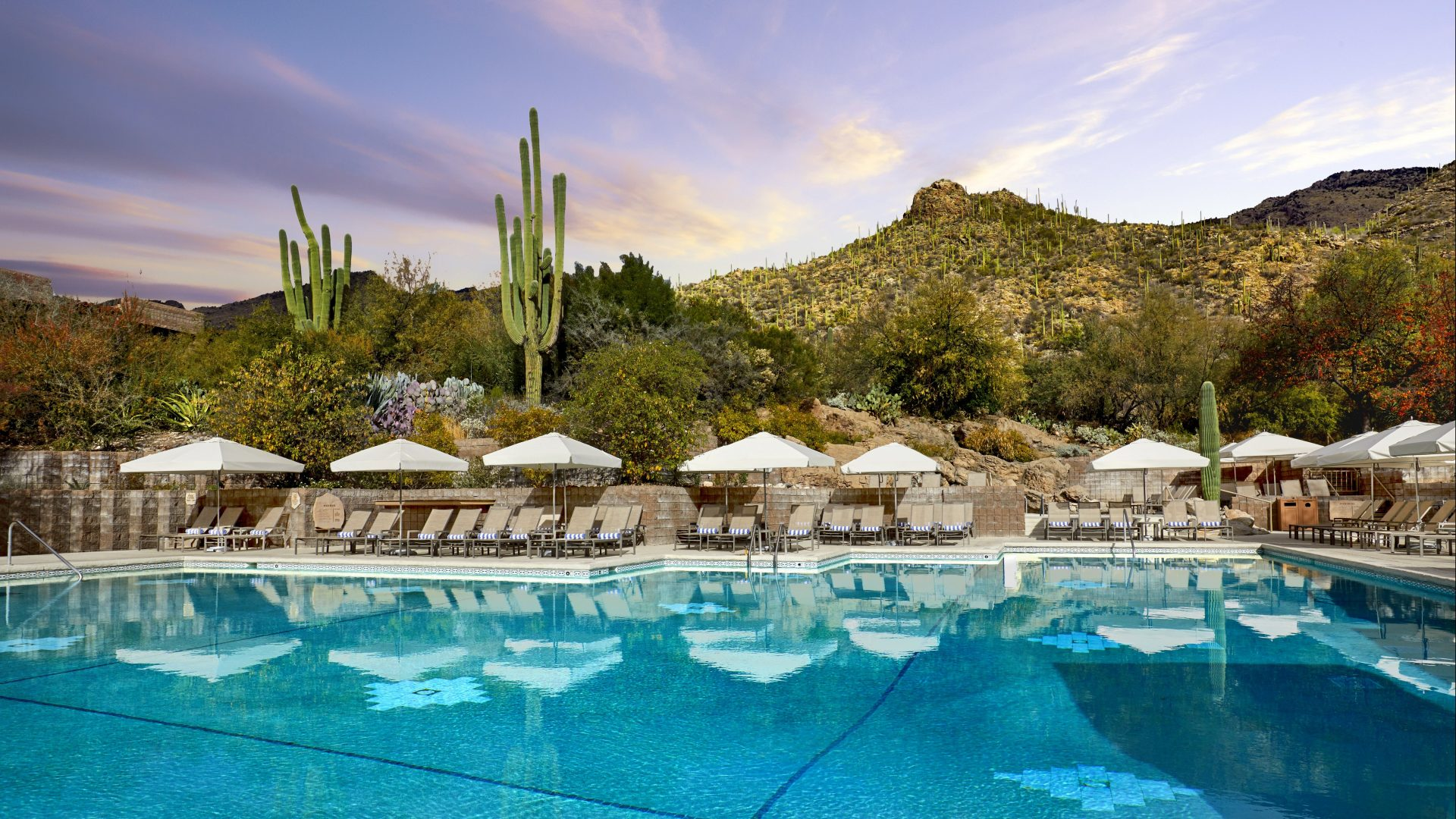 Pool | Loews Ventana Canyon Resort