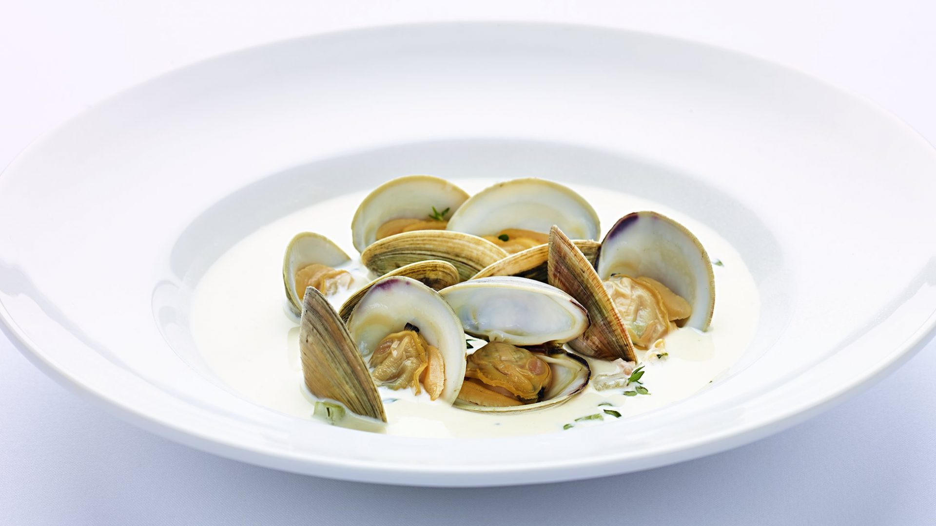 Plate of Littleneck Clam Chowder | Catering Food & Beverage | Loews Hotels & Resorts