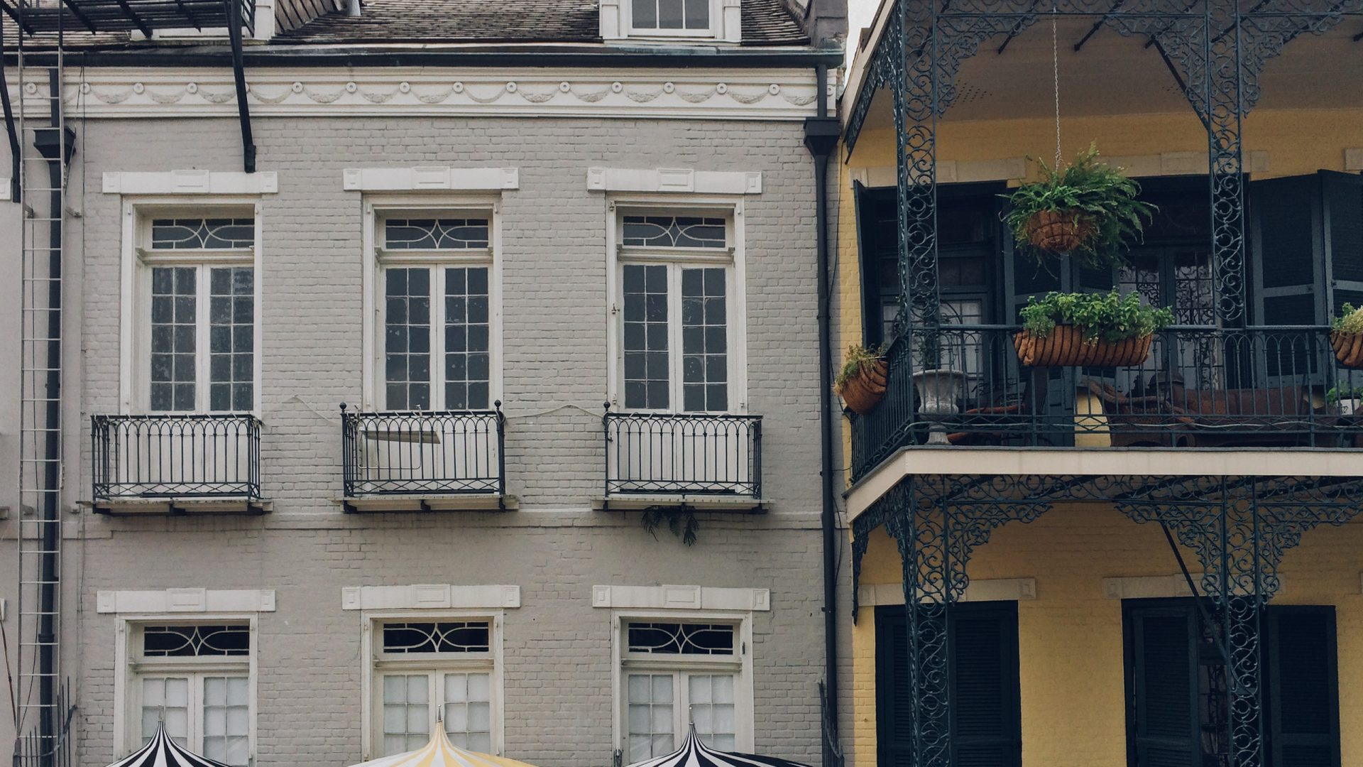 French Quarter Cafe | Loews New Orleans Hotel