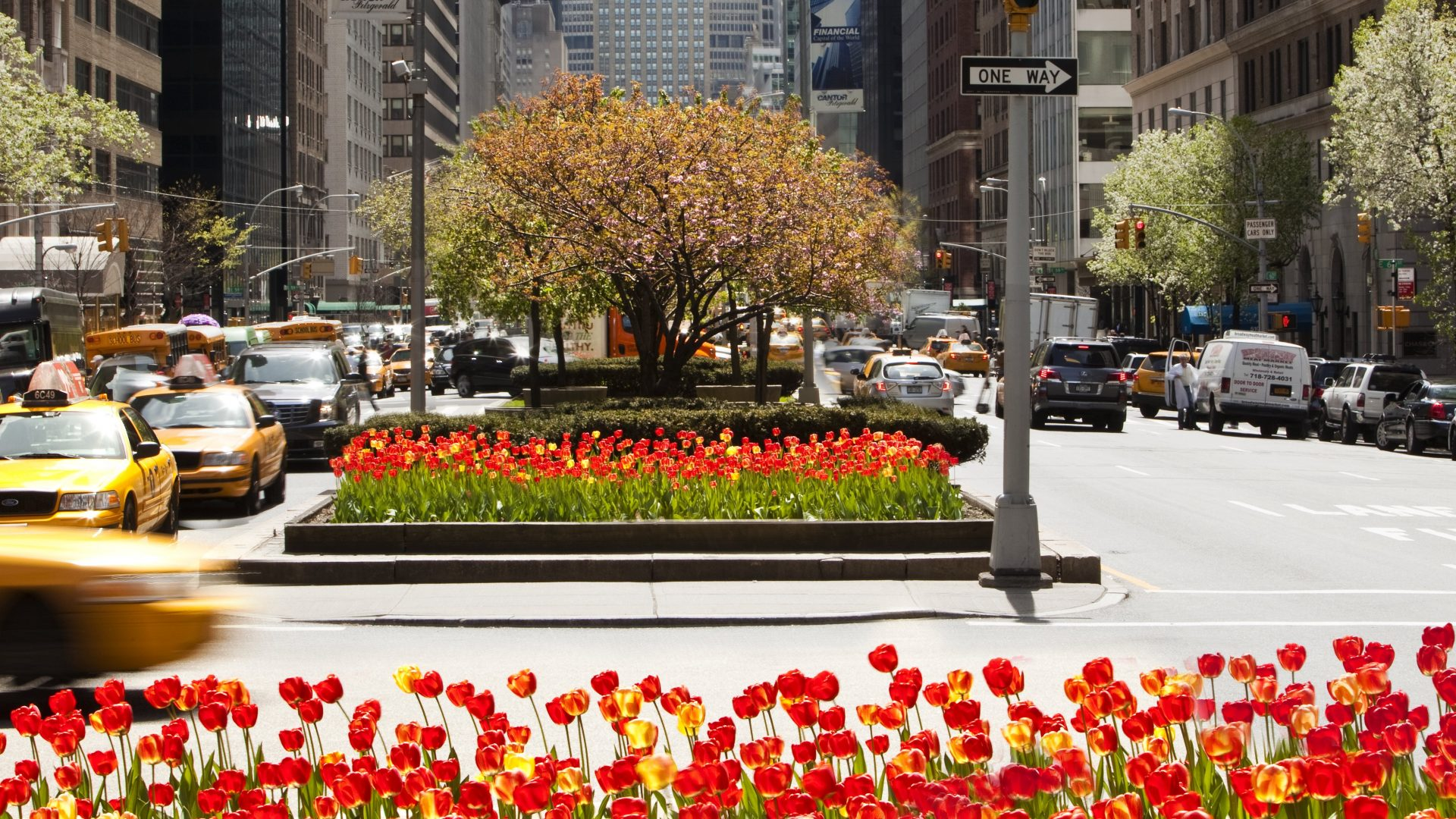 Park Avenue Flowers | Loews Regency New York Hotel