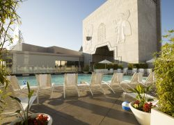 Terraza en la piscina   Loews Hollywood Hotel