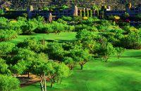 Un gran campo verde con árboles en el fondo