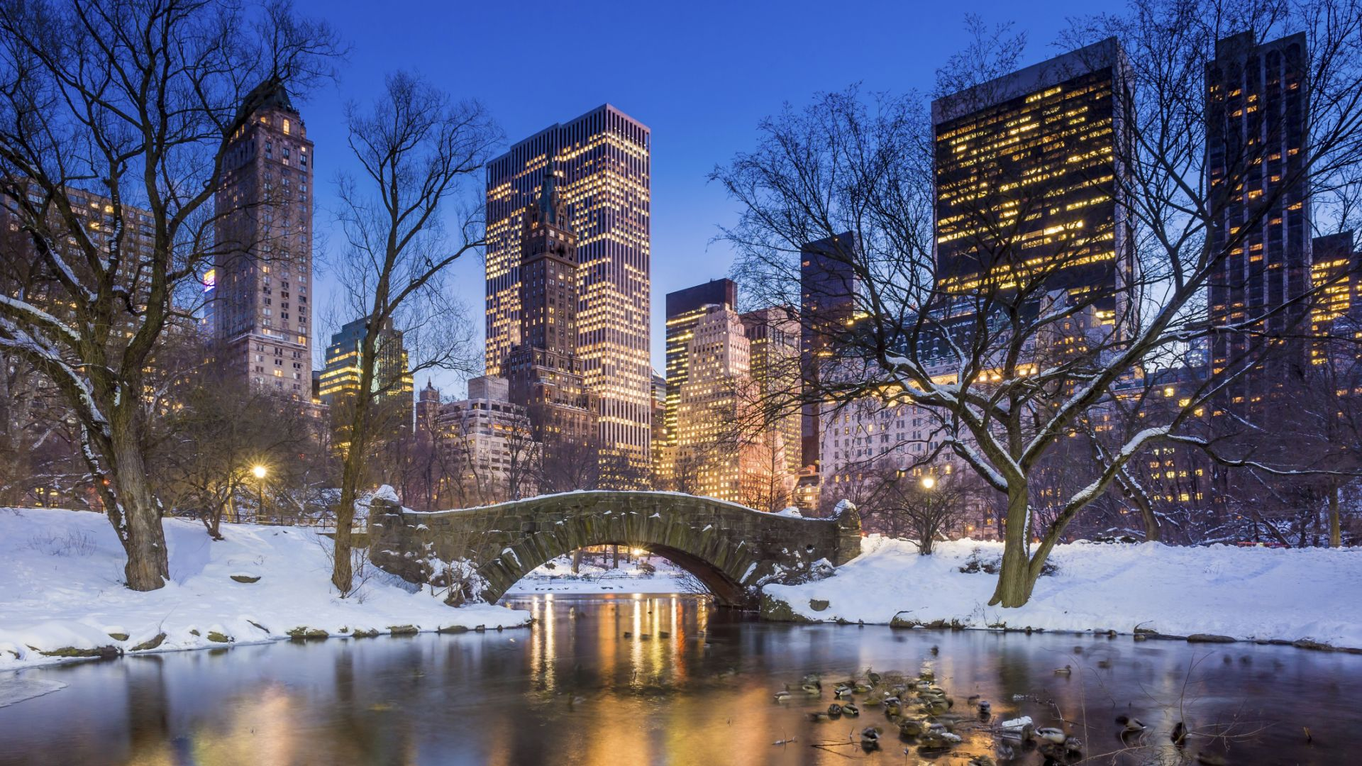 Invierno en Central Park | Loews Regency New York Hotel