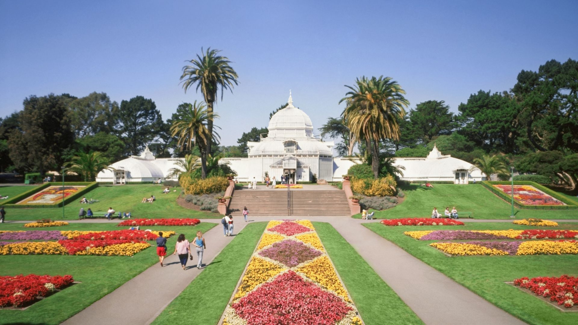 A Group Of Lawn Chairs Sitting On Top Of A Grass Covered Field With Conservatory Of Flowers In The Background