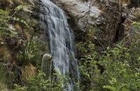 Primer plano de la ladera de una montaña junto a una cascada