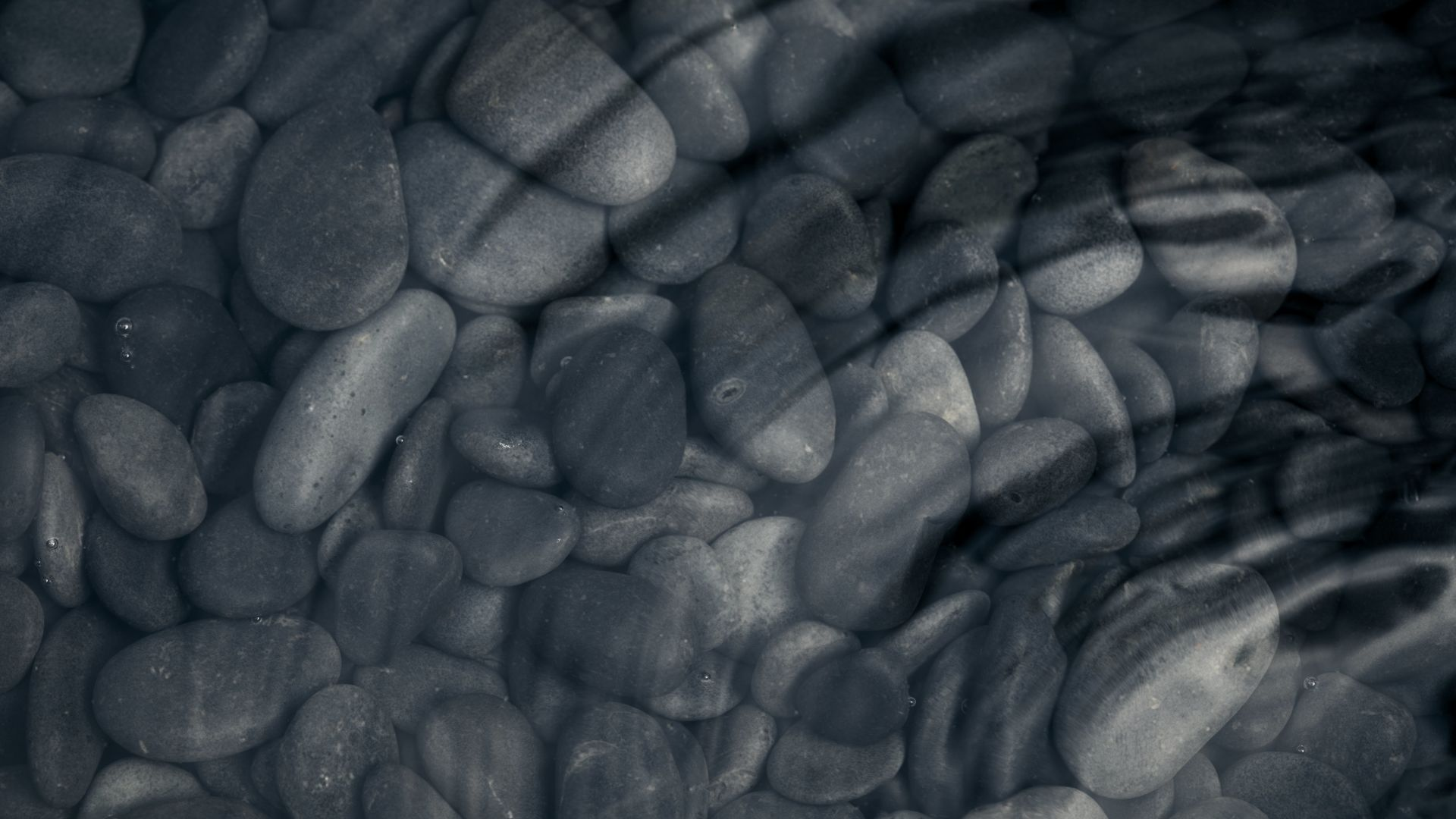 A Close Up Of A Rock