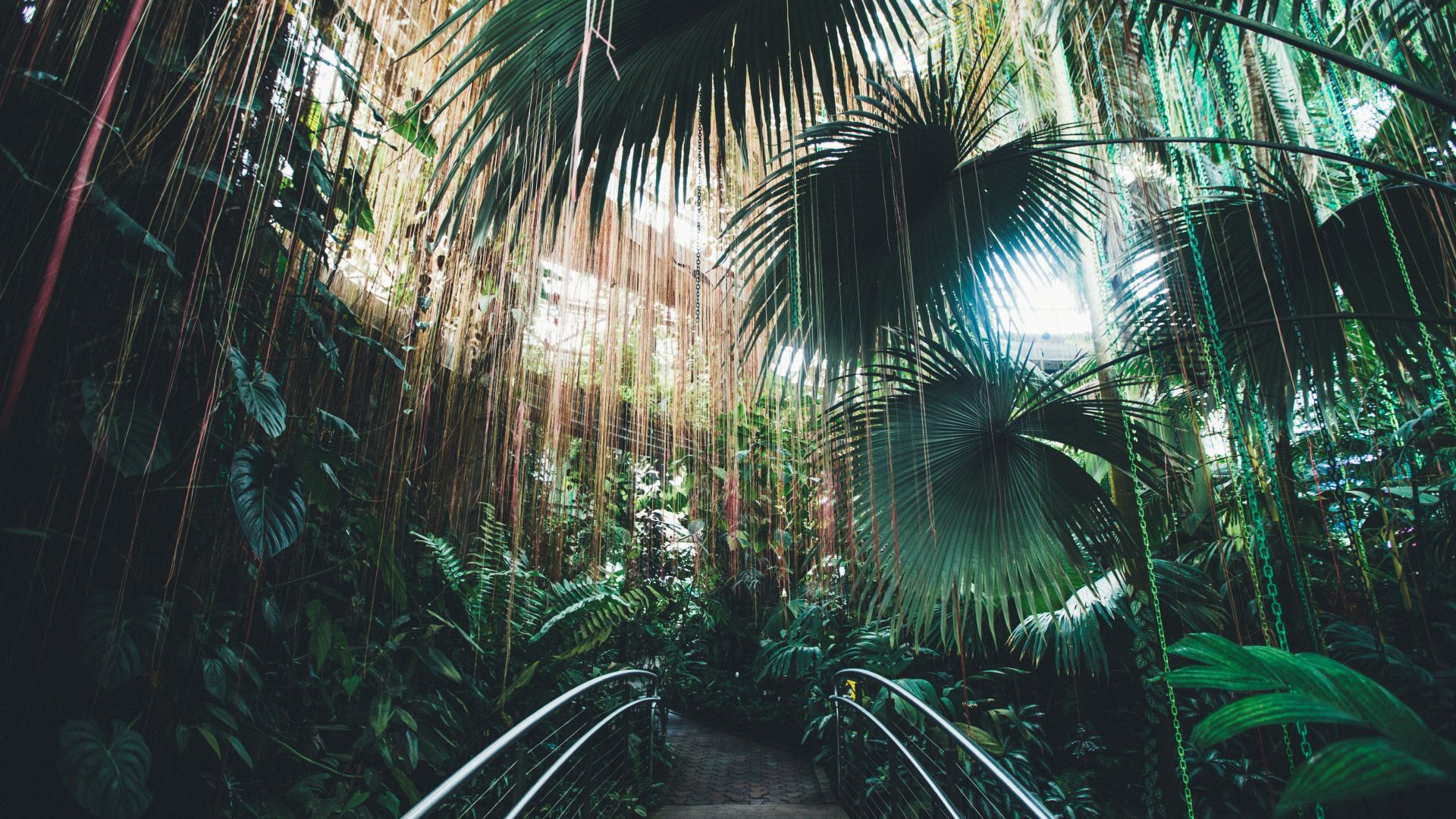 Atlanta Botanical Gardens | Loews Atlanta Hotel